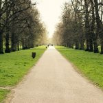 Path lined by trees in Hyde Park