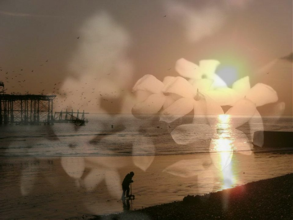 Composite image: Beach at sunset with overlaid flowers